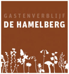 De Hamelberg